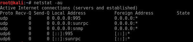 UDP netstat connections