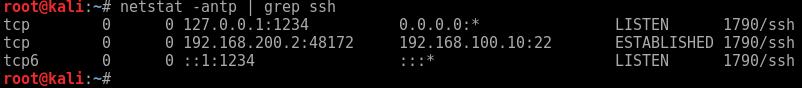 netstat -antp ssh dynamic ports